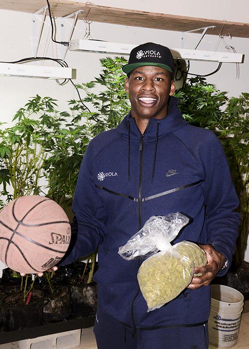 Al Harrington Basketball Marijuana NBA Cannabis Now