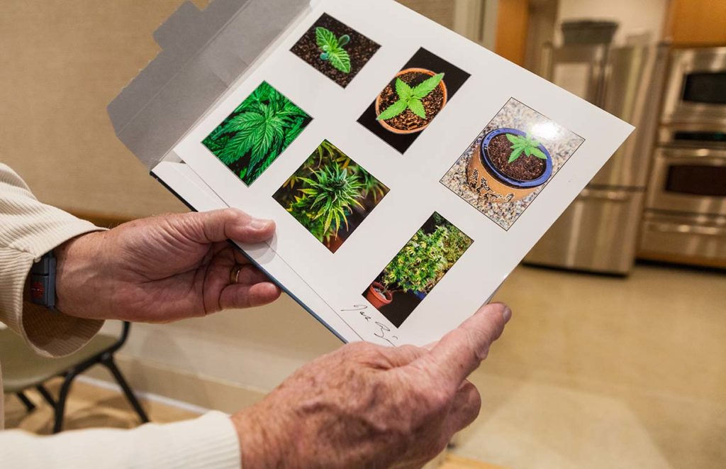 Seniors Cannabis Now Magazine