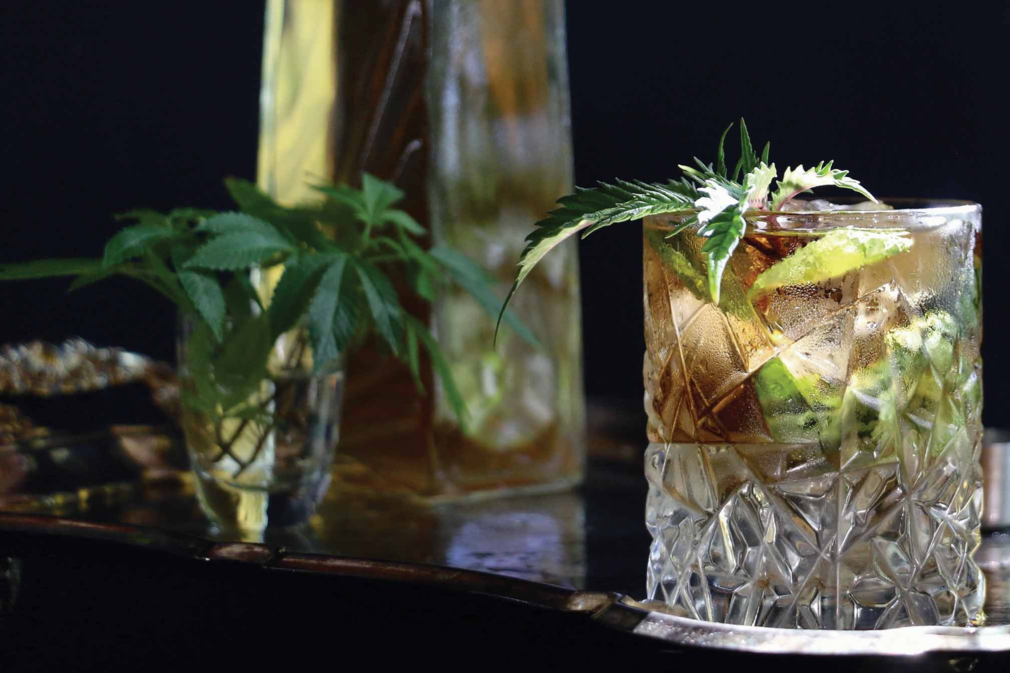 Thai Basil and Lime Cannabis-Infused Mocktail